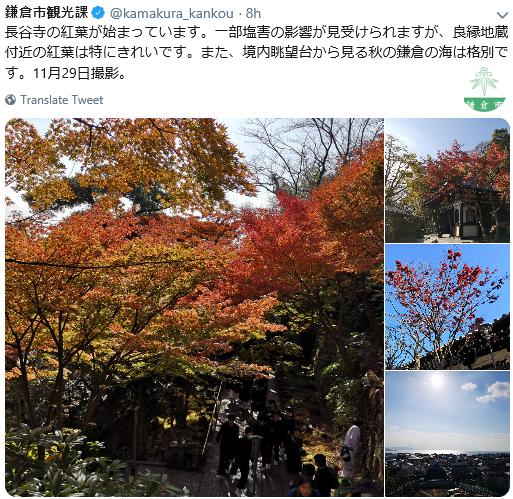 1129鎌倉1.png