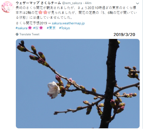 0320東京.png