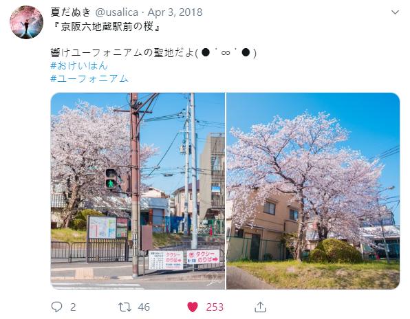 推特有花.png