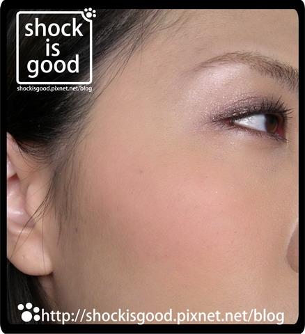 overprint-shockisgood-2009 (5).jpg