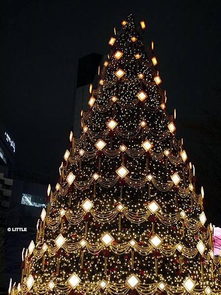 2013.12 東京六本木 HILLS 1F 聖誕樹