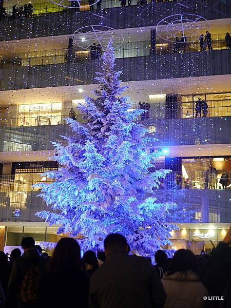 2013.12 東京車站 KITTE 聖誕樹 (夜間燈光秀)