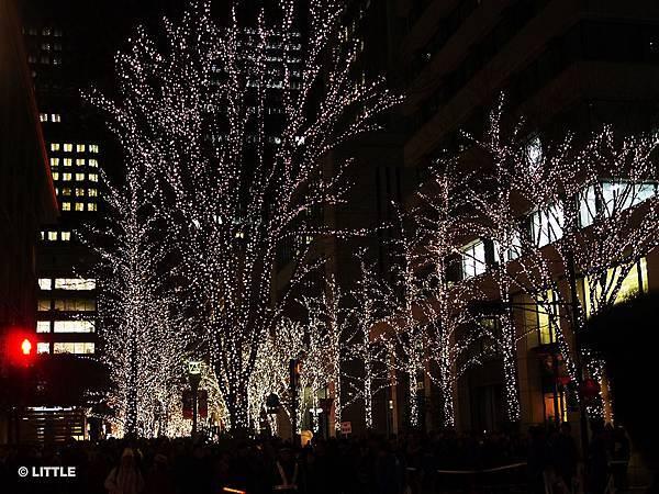 2013.12 東京車站丸之內街頭燈飾