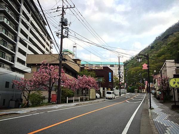 d301鬼怒川.jpg