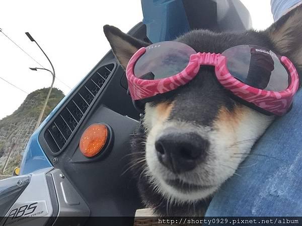 Day 2 太陽眼鏡就是炫