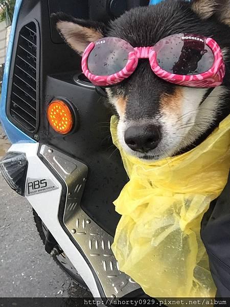 Day 5 雨衣裝備