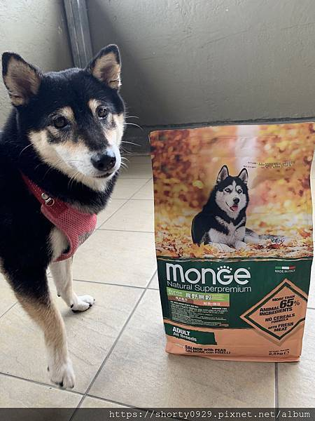 義大利寵糧瑪恩吉Monge 1