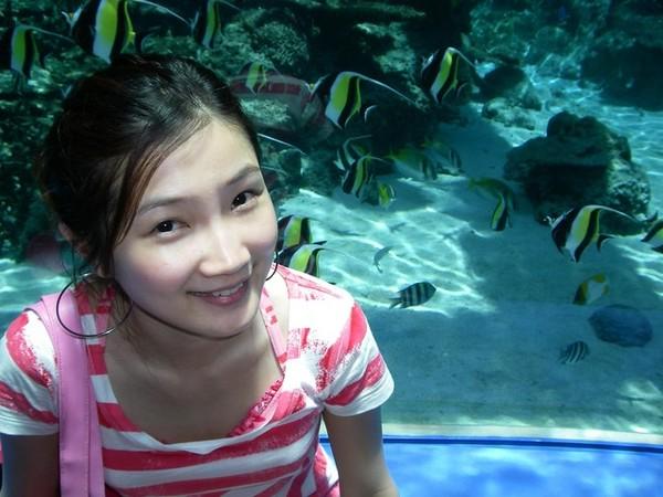 沖繩海洋博公園
