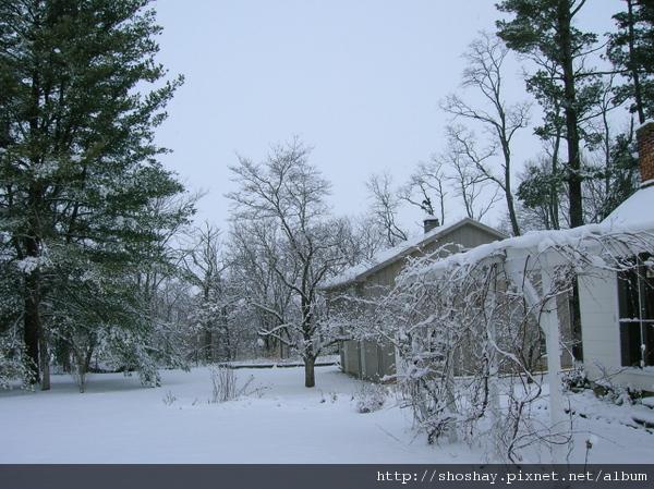 雪景snow5.jpg