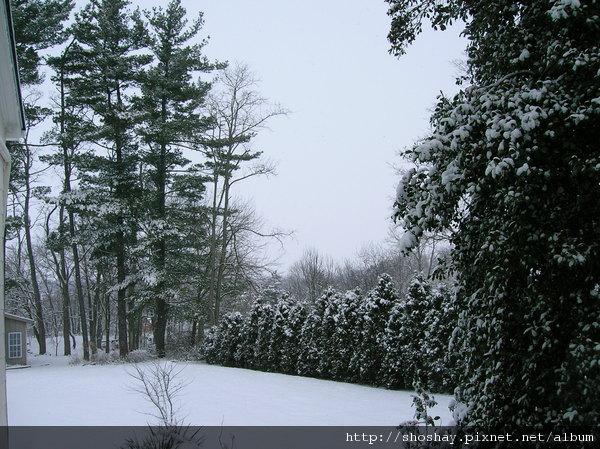 雪景DSCN0087.JPG