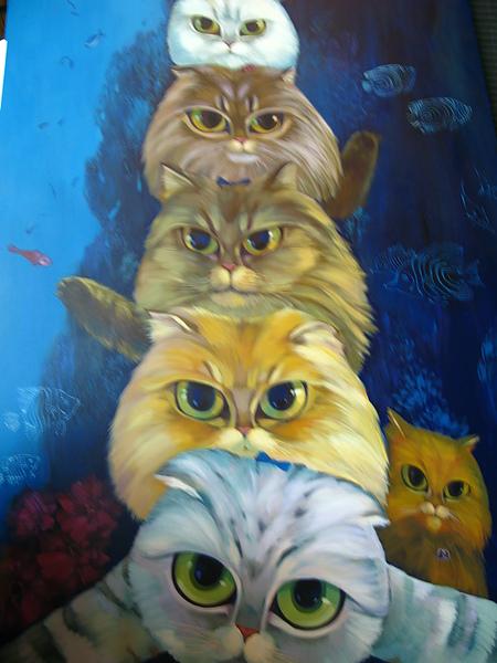 貓咪疊疊樂:D
