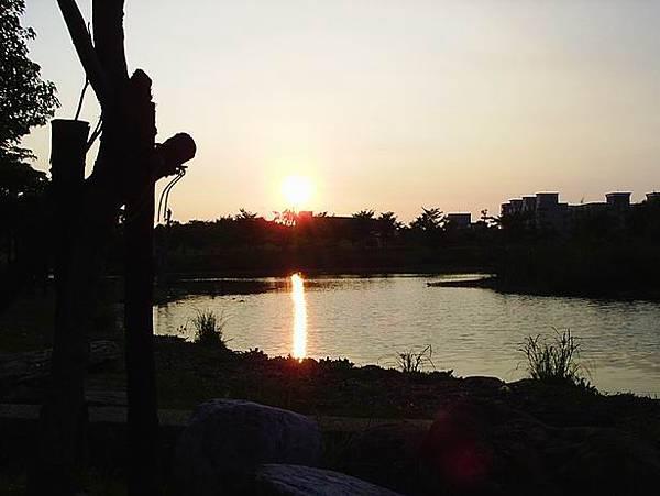 [20070802]高大生態池