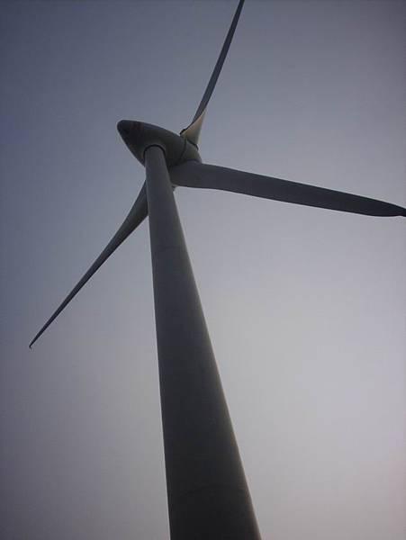 壯碩的風車,