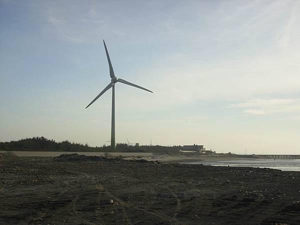 看到眾多風車十分驚艷,而且開心~