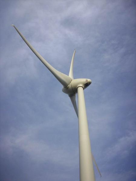 看到風車一整個high起來狂拍~