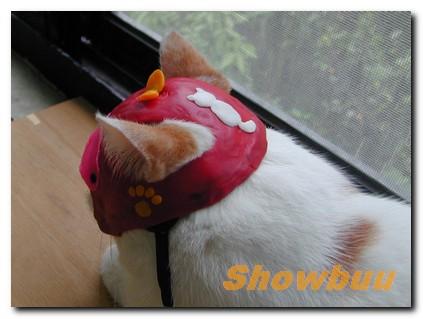 showbuu-05.jpg