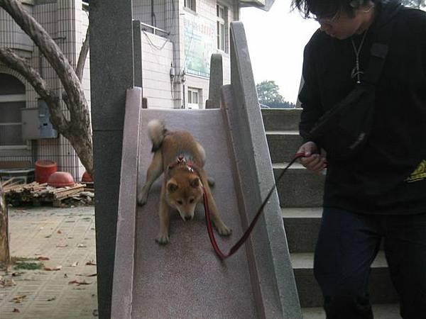換把拔帶我溜滑梯..呵呵~~好好玩唷~~