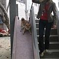 馬麻決定再試一次~~喔耶..我愛溜滑梯