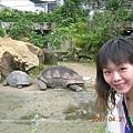 媽呀! 那隻象龜真是嚇死我了~~~超級大的