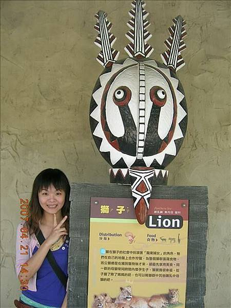 獅子去健康檢查了,看不到獅子我只好跟這個拍