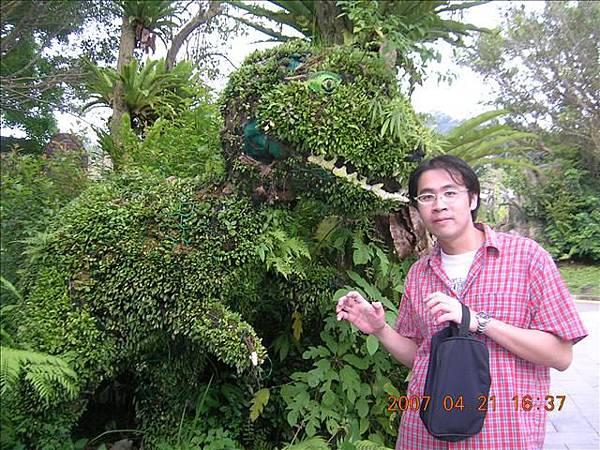 恐龍是樹做成的~~看的出來嗎...