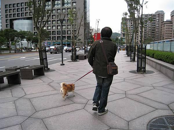 一人一狗散步中