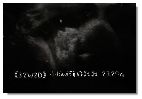 32W+2側照.jpg