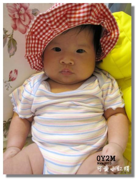 kiwi小紅帽.jpg