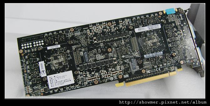 showmerDSC_6617