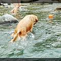 swim072005 133_resize