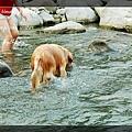 swim072005 135_resize
