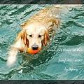 swim072005 138_resize