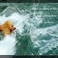 swim072005 141_resize