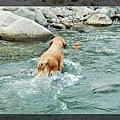 swim072005 147_resize