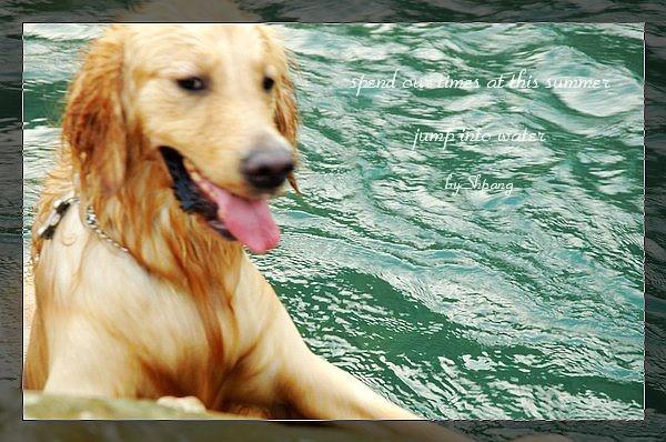 swim072005 174_resize
