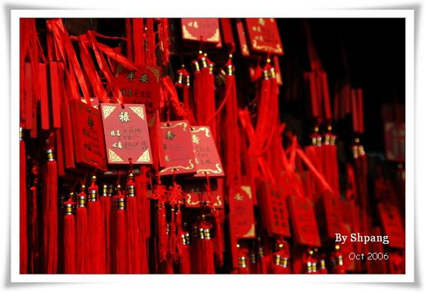 Shanghai1020006(1) 014_resize.jpg