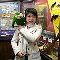 肩膀上的綠鳥