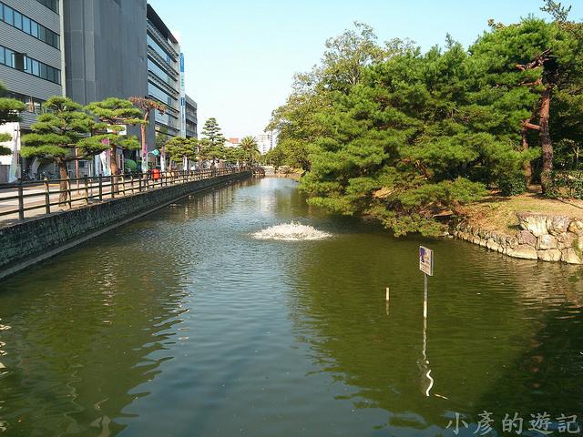 S_Yosako_0156