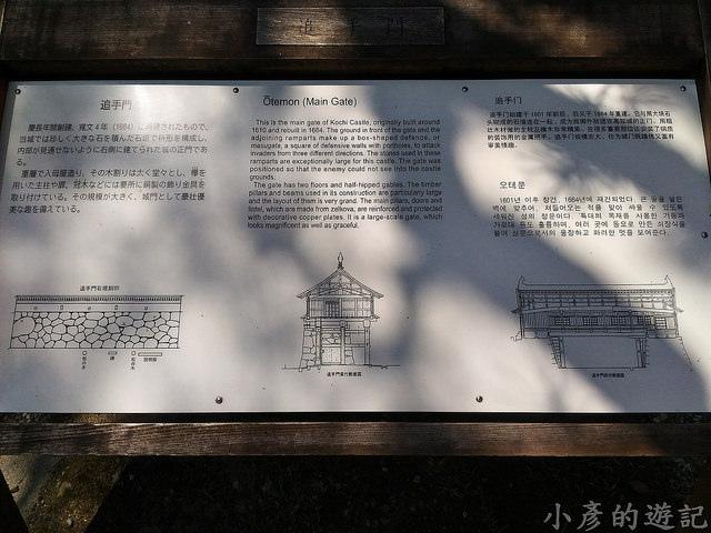 S_Yosako_0271