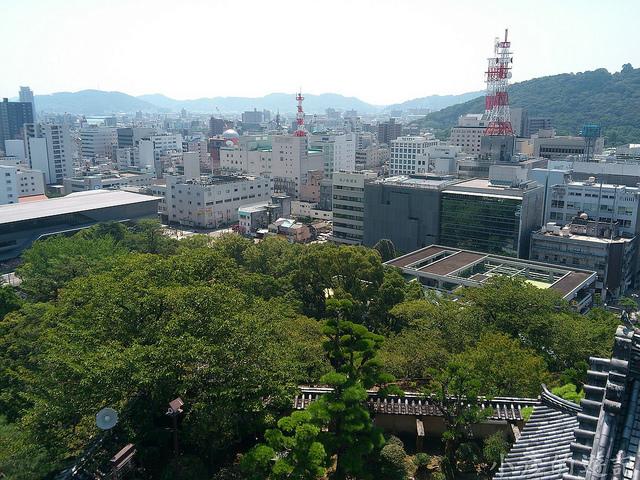 S_Yosako_0245