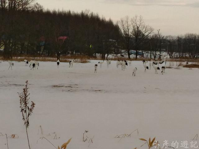 S_Snow_1453