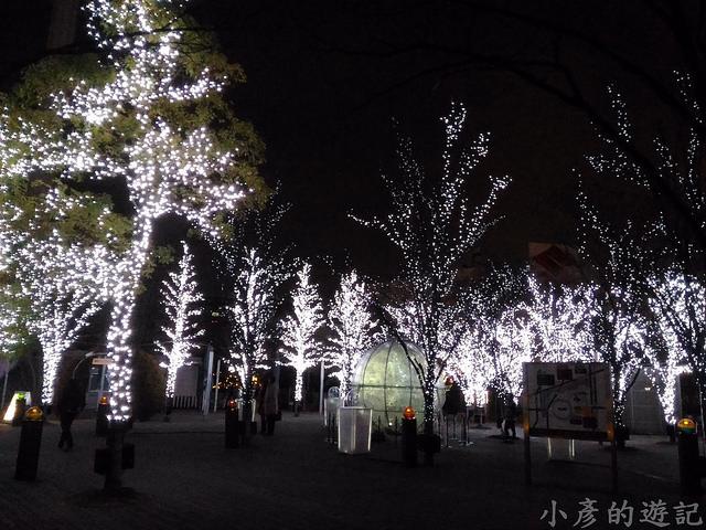 S_Snow_1563