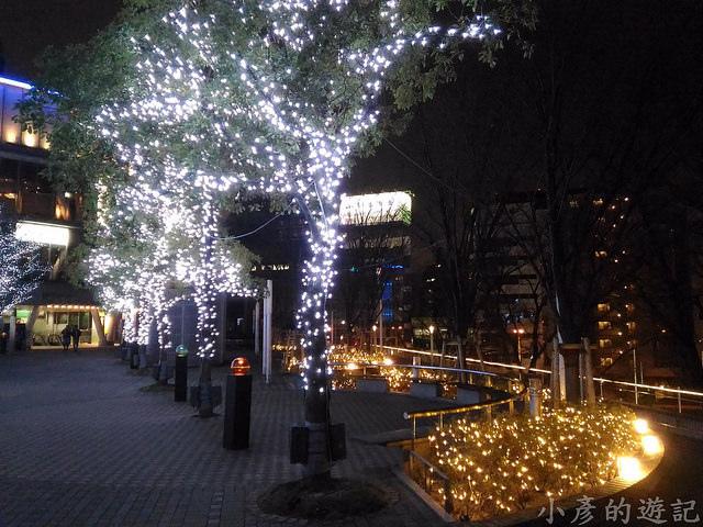 S_Snow_1557