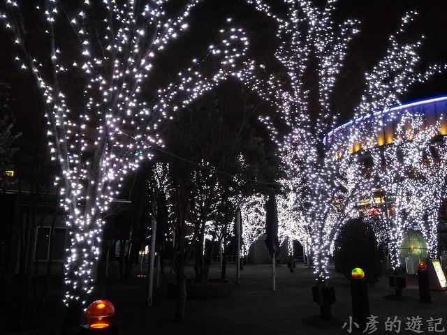 S_Snow_1556