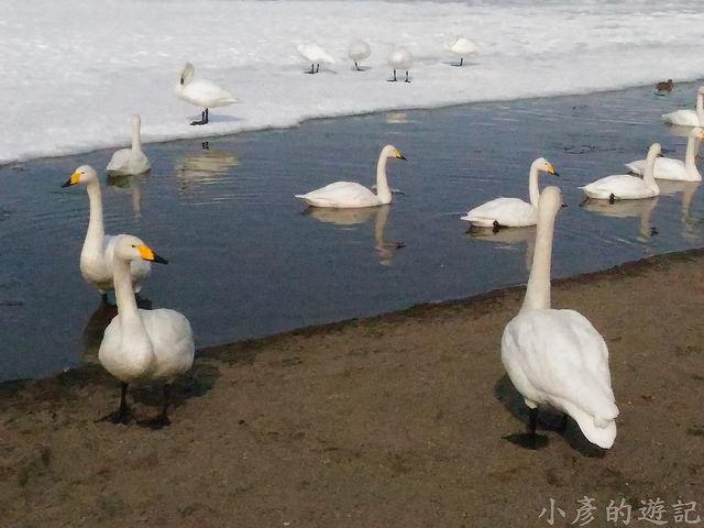 S_Snow_1057