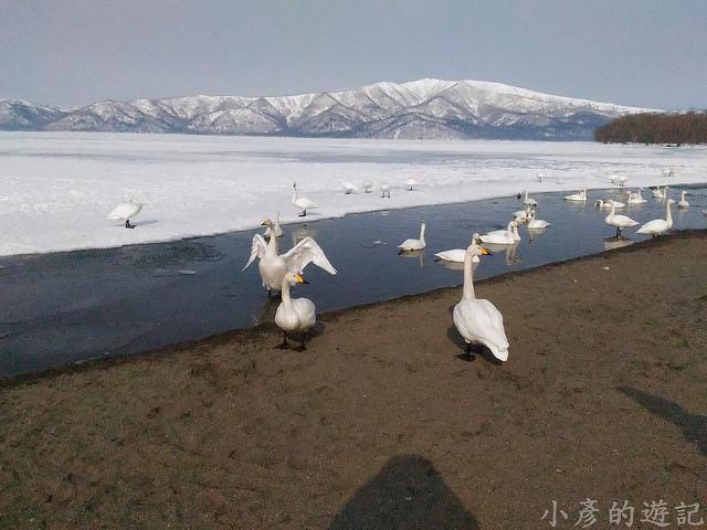 S_Snow_1058