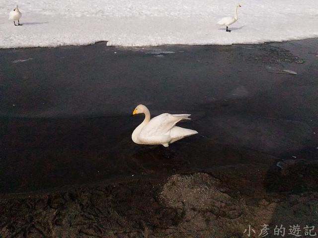 S_Snow_1061
