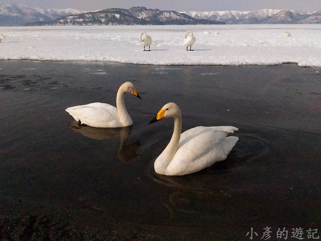 S_Snow_1063
