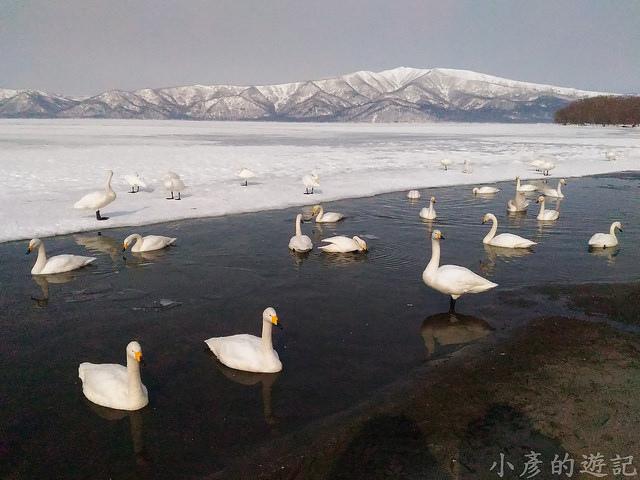 S_Snow_1066
