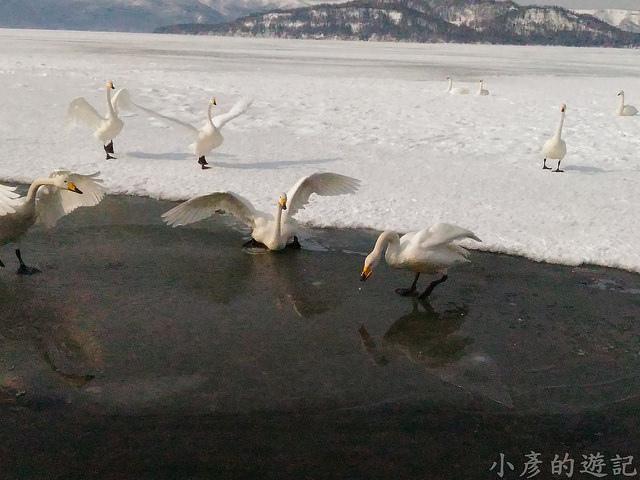 S_Snow_1093